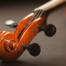 Geigenkopf, Foto: pixabay, Pexels
